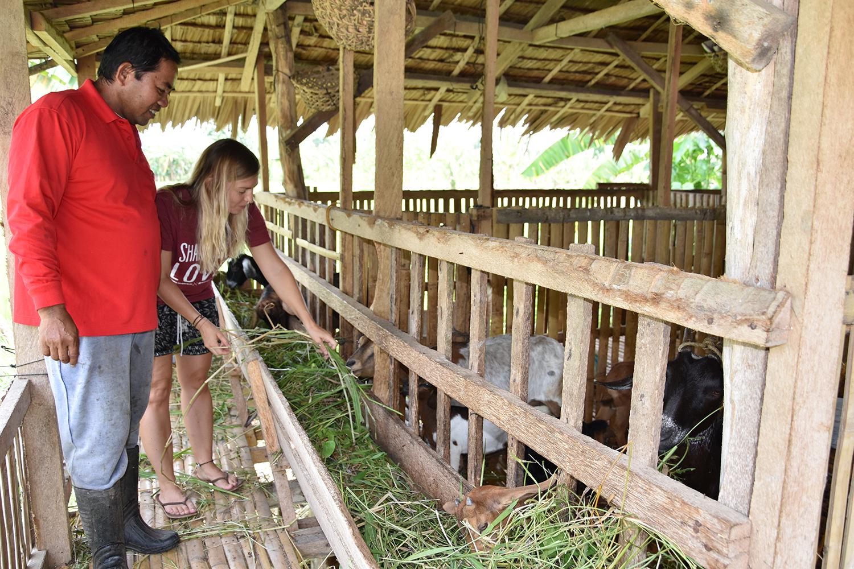 NIK 0004 - Von Auberginen ernten bis Ziegen füttern