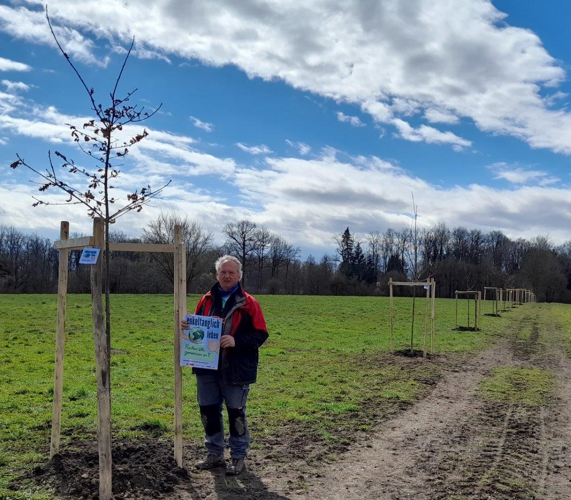 14 Eichenallee 3 - Bäume pflanzen für die Enkel