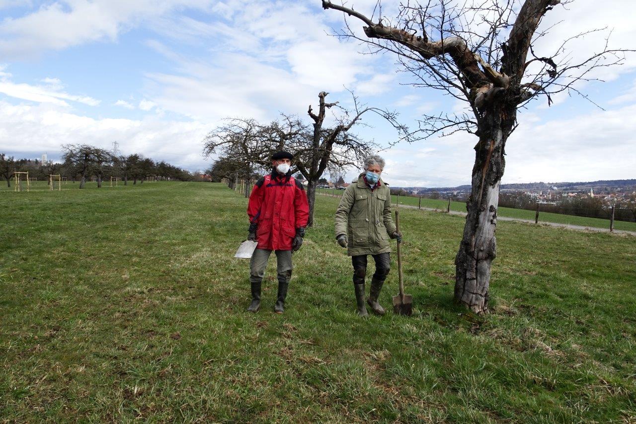 DSC01718 - Bäume pflanzen für die Enkel