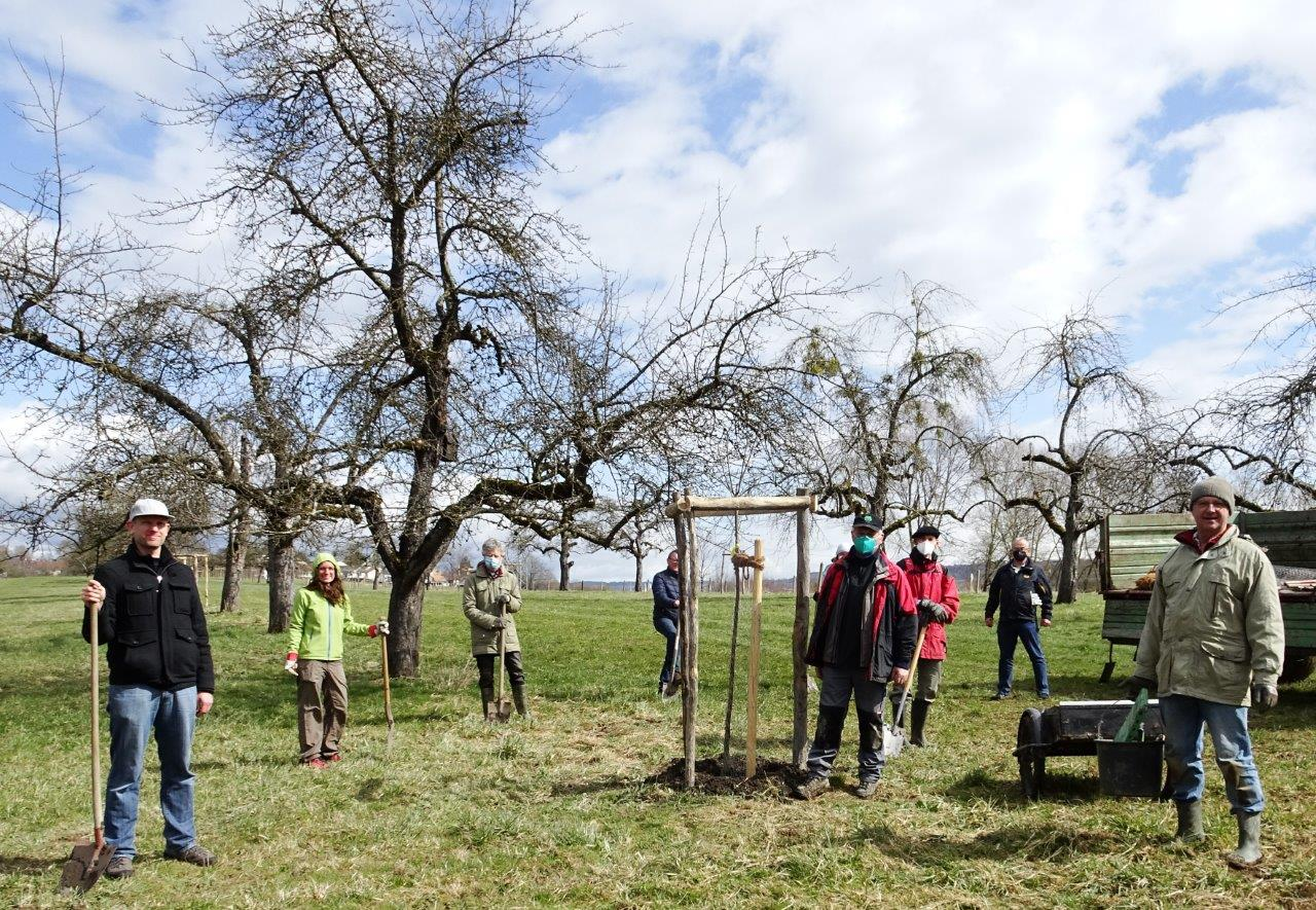 DSC01727b - Bäume pflanzen für die Enkel